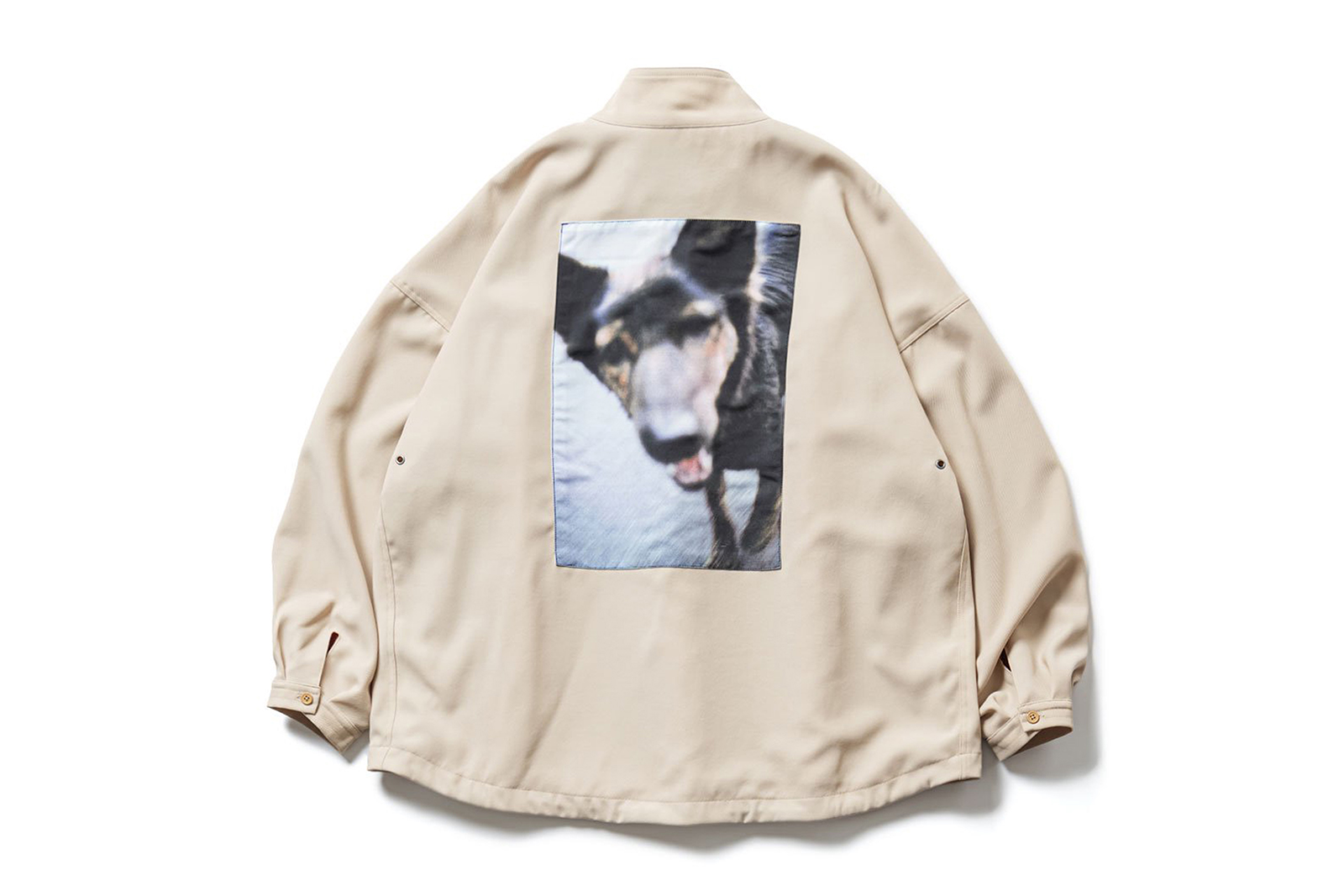dog-anorak_p1